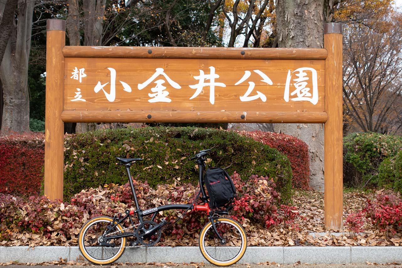 都立小金井公園width=